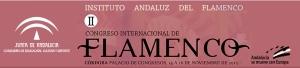 flamenco_banner